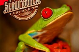 SlowBounce Radio #273